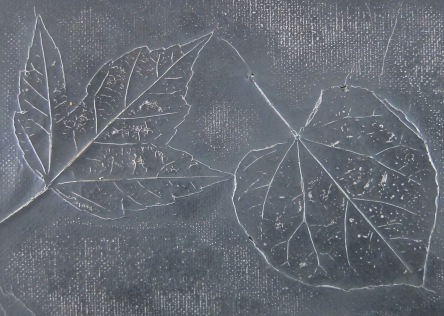 One of our most fun art projects at school so far: metallic leaf relief! The students pickedo out a few leaves and glued them to a small canvas board. I then spray glued thin aluminum foil over the top, pressed it into the leaves, and covered the foil with black spray paint. After it was dry, the girls used steel wool to carefully rub away the black paint, exposing the outline and veins of the leaves in bright silver.